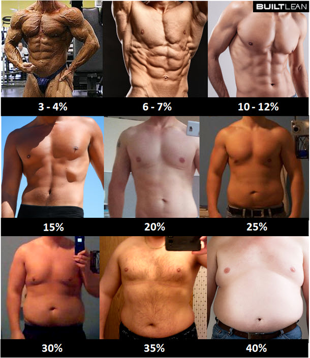 Body Fat pictures - Beautiful to the Core