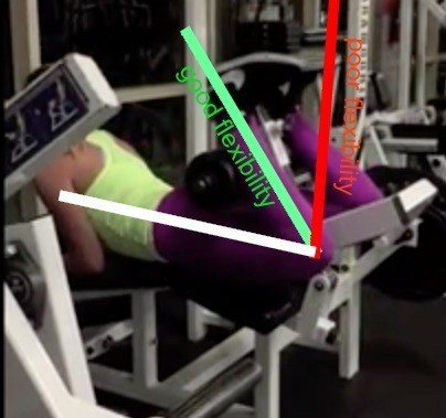 leg curl range of motion